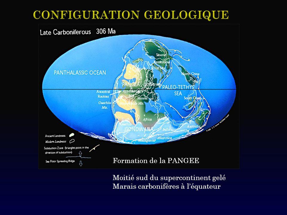 Formation de la PANGEE Moitié sud du supercontinent gelé Marais carbonifères à léquateur