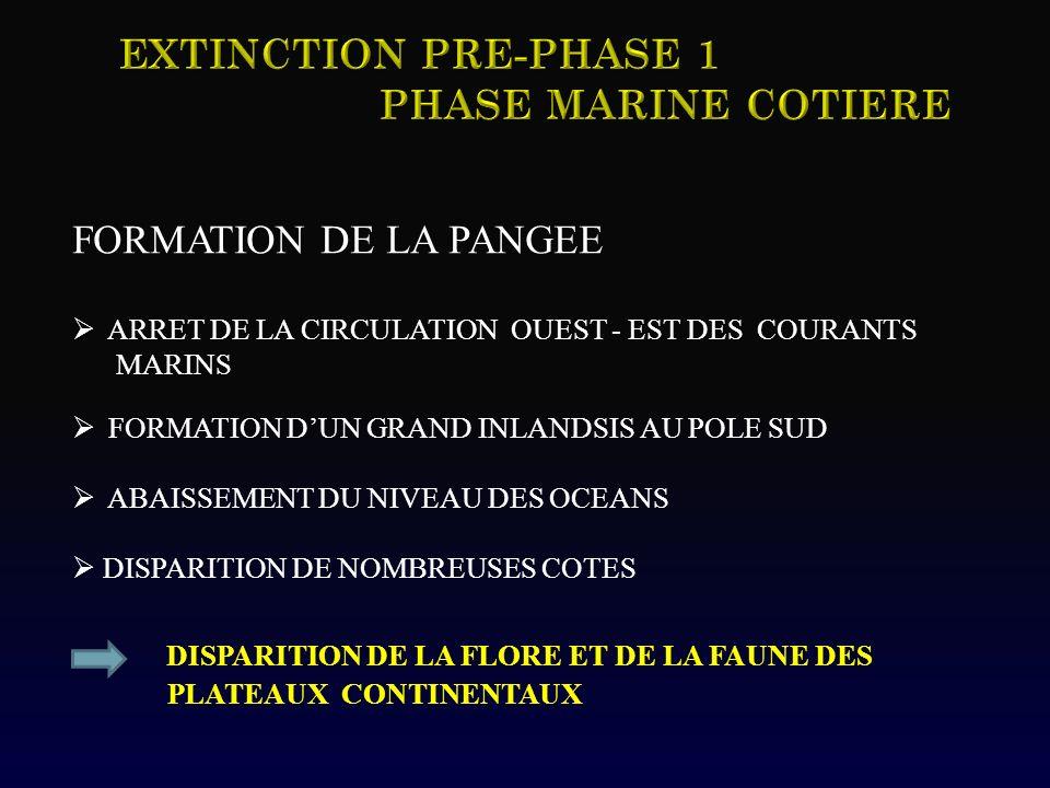 FORMATION DE LA PANGEE ARRET DE LA CIRCULATION OUEST - EST DES COURANTS MARINS FORMATION DUN GRAND INLANDSIS AU POLE SUD ABAISSEMENT DU NIVEAU DES OCE