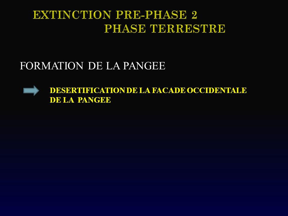 FORMATION DE LA PANGEE DESERTIFICATION DE LA FACADE OCCIDENTALE DE LA PANGEE