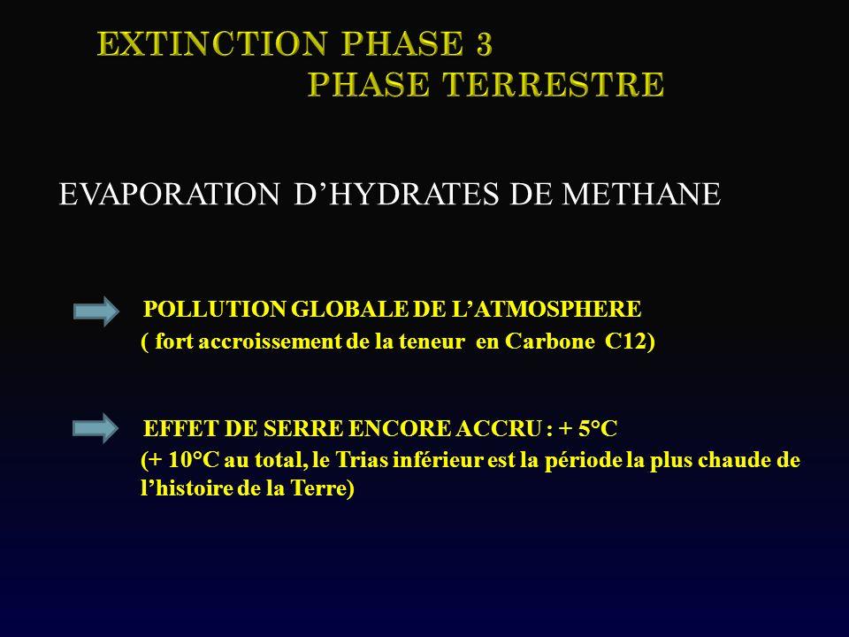 EVAPORATION DHYDRATES DE METHANE POLLUTION GLOBALE DE LATMOSPHERE ( fort accroissement de la teneur en Carbone C12) EFFET DE SERRE ENCORE ACCRU : + 5°