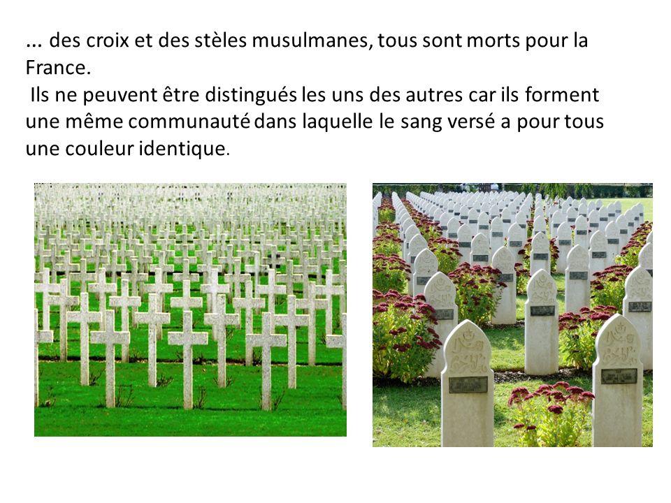 … des croix et des stèles musulmanes, tous sont morts pour la France. Ils ne peuvent être distingués les uns des autres car ils forment une même commu