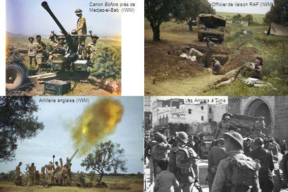 Canon Bofors près de Medjez-el-Bab (IWM) Artillerie anglaise (IWM) Officier de liaison RAF (IWM) Les Anglais à Tunis (IWM)