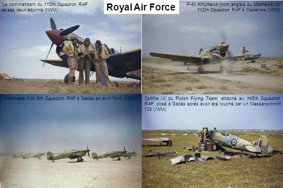 P-40 Kittyhawk (nom anglais du Warhawk) du 112th Squadron RAF à Medenine (IWM) Le commandant du 112th Squadron RAF et ses deux adjoints (IWM) Hurrican
