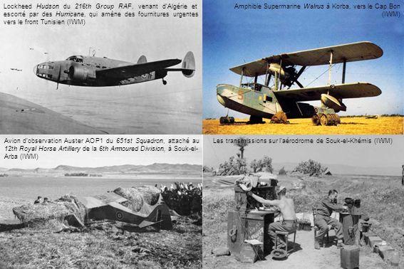 Lockheed Hudson du 216th Group RAF, venant dAlgérie et escorté par des Hurricane, qui amène des fournitures urgentes vers le front Tunisien (IWM) Amph