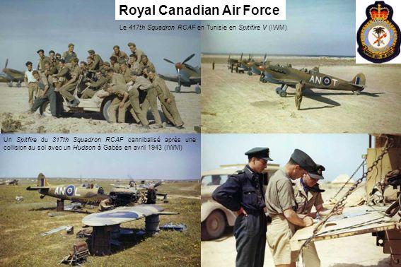 Le 417th Squadron RCAF en Tunisie en Spitifire V (IWM) Un Spitfire du 317th Squadron RCAF cannibalisé après une collision au sol avec un Hudson à Gabè