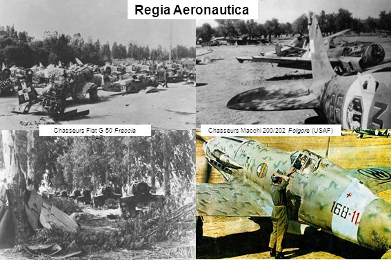 Chasseurs Fiat G 50 Freccia (USAF) Regia Aeronautica Chasseurs Macchi 200/202 Folgore (USAF)