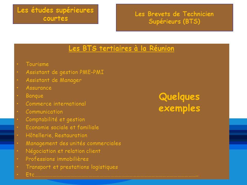 Les BTS tertiaires à la Réunion Tourisme Assistant de gestion PME-PMI Assistant de Manager Assurance Banque Commerce international Communication Compt