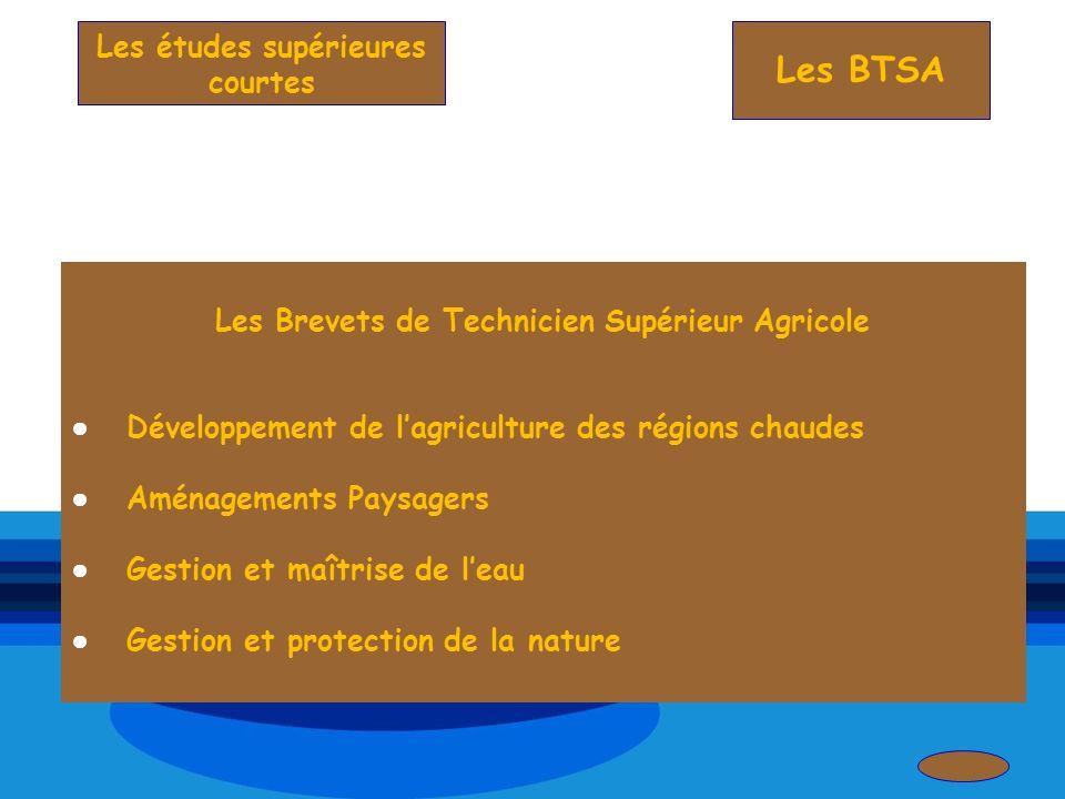 Les BTSA Les Brevets de Technicien Supérieur Agricole Développement de lagriculture des régions chaudes Aménagements Paysagers Gestion et maîtrise de
