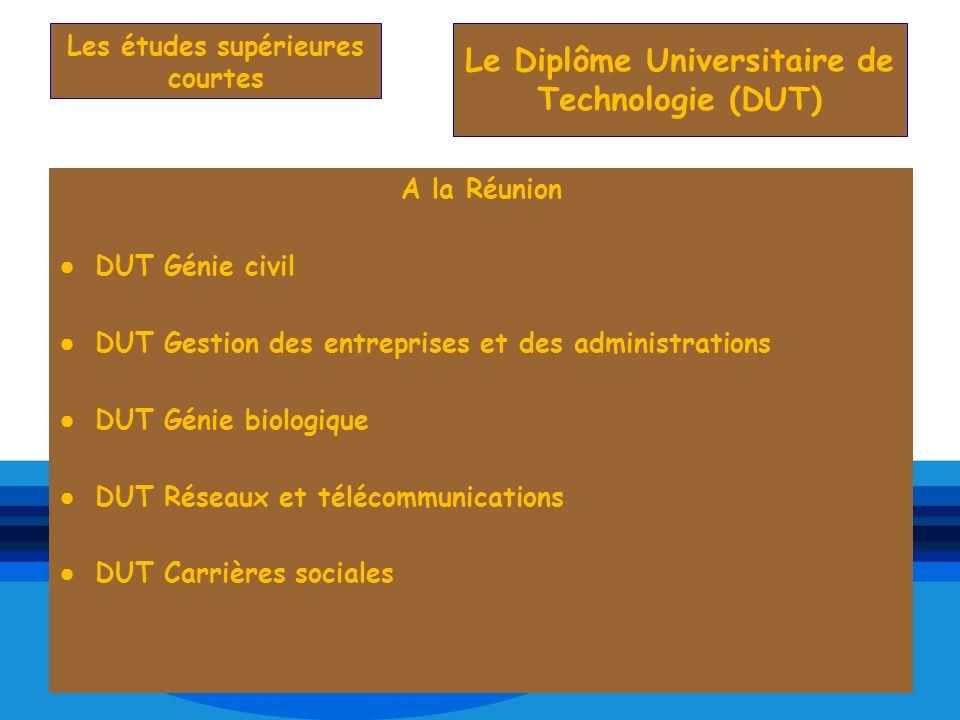 A la Réunion DUT Génie civil DUT Gestion des entreprises et des administrations DUT Génie biologique DUT Réseaux et télécommunications DUT Carrières s