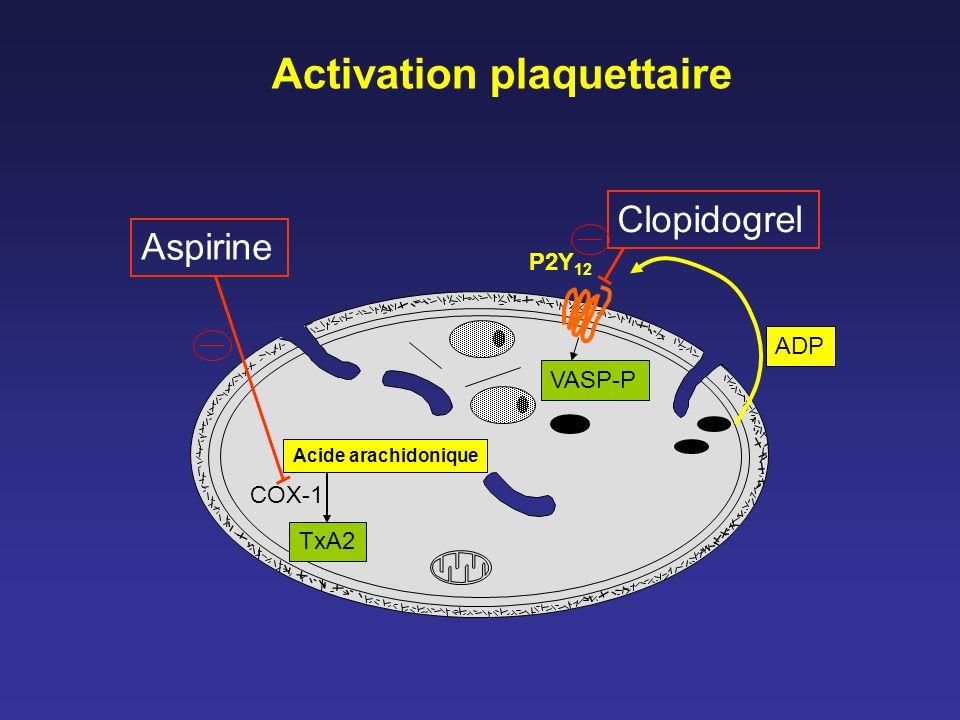Résistances au clopidogrel Résistance vraie : pas dinhibition du P2Y 12 –index de réactivité (VASP-P) P2Y 12, agrég ADP, VerifyNow TM P2Y 12 .