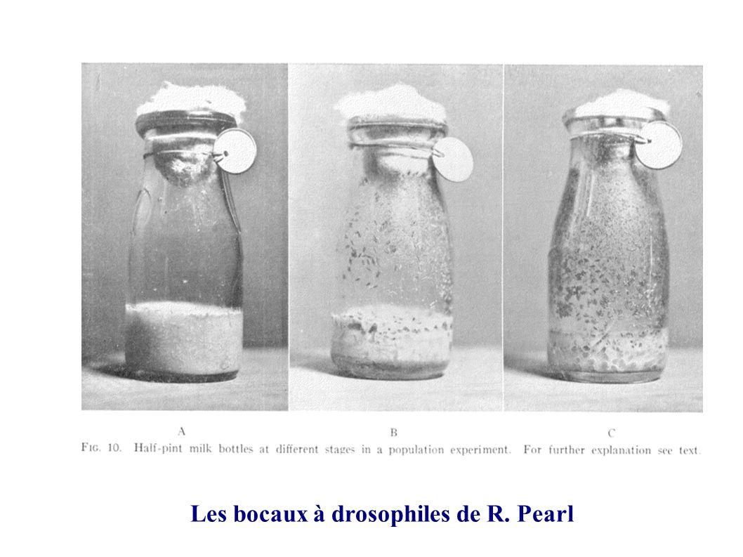 Les bocaux à drosophiles de R. Pearl