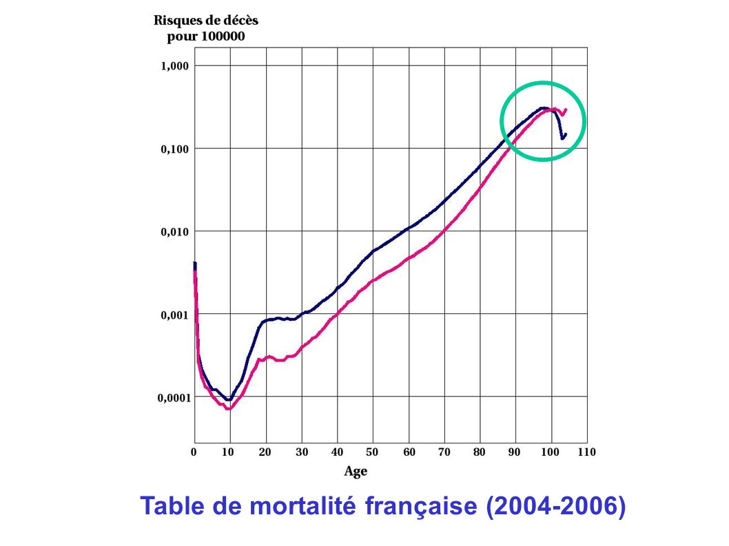 Table de mortalité française (2004-2006)