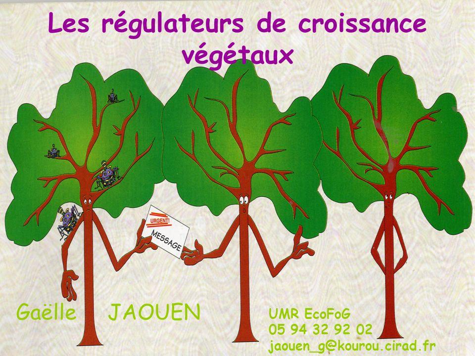 Les régulateurs de croissance végétaux Gaëlle JAOUEN UMR EcoFoG 05 94 32 92 02 jaouen_g@kourou.cirad.fr