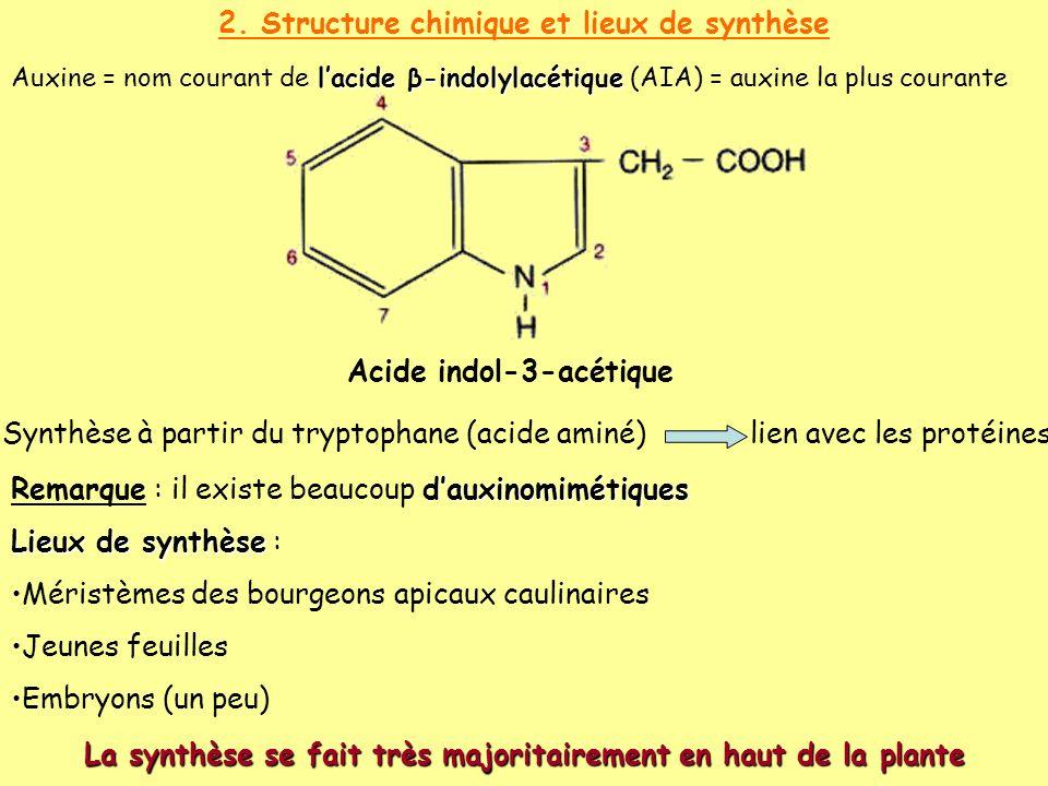 2. Structure chimique et lieux de synthèse lacide β-indolylacétique Auxine = nom courant de lacide β-indolylacétique (AIA) = auxine la plus courante S