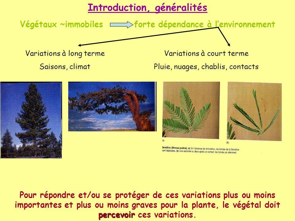 Végétaux ~immobiles forte dépendance à lenvironnement Variations à long terme Saisons, climat Variations à court terme Pluie, nuages, chablis, contact