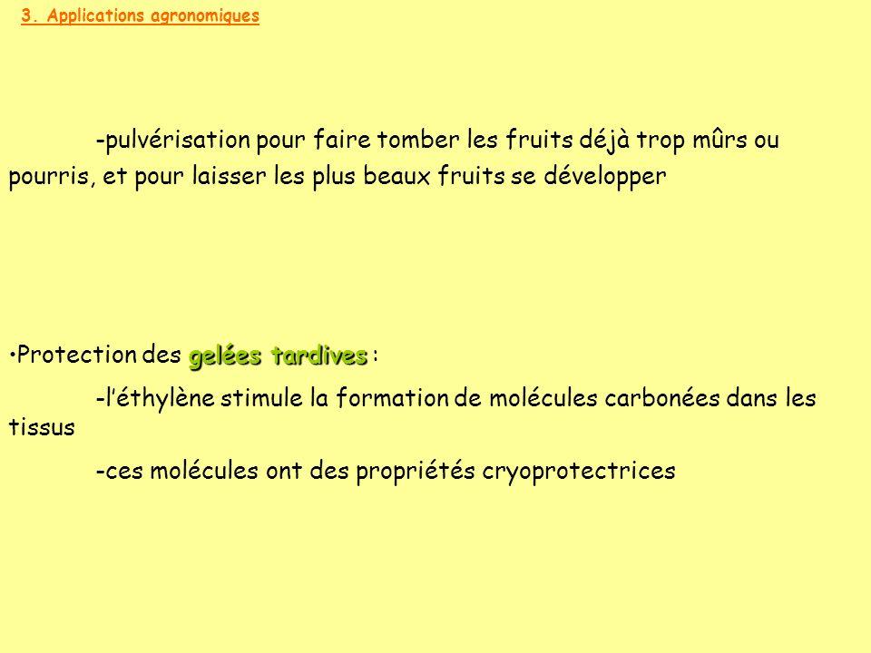 3. Applications agronomiques gelées tardivesProtection des gelées tardives : -léthylène stimule la formation de molécules carbonées dans les tissus -c