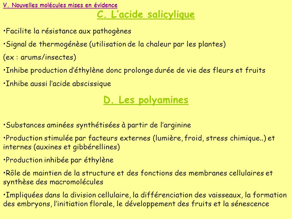 V. Nouvelles molécules mises en évidence C. Lacide salicylique Facilite la résistance aux pathogènes Signal de thermogénèse (utilisation de la chaleur