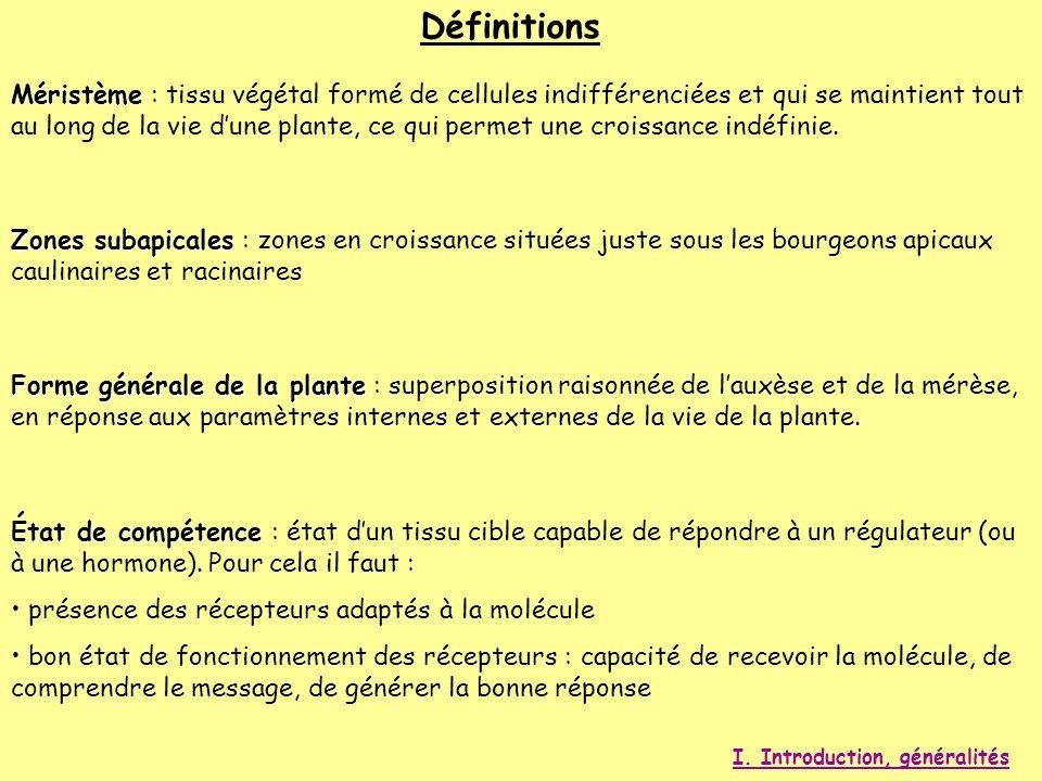 Définitions Méristème Méristème : tissu végétal formé de cellules indifférenciées et qui se maintient tout au long de la vie dune plante, ce qui perme