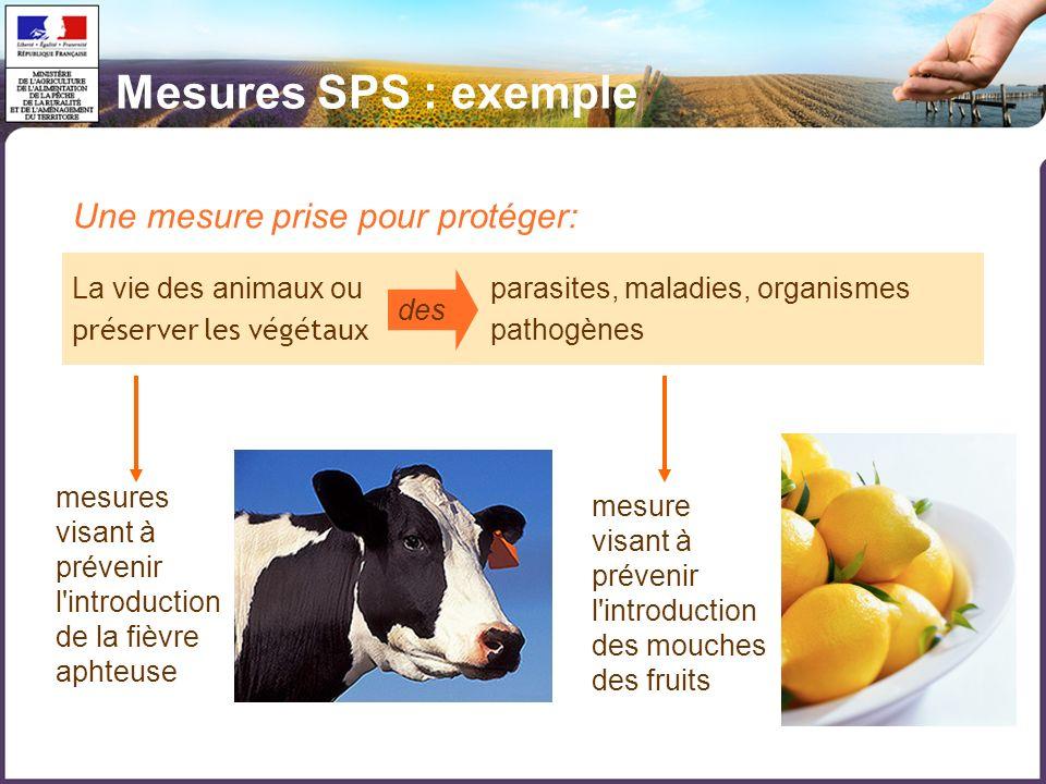 Une mesure prise pour protéger: La vie des animaux ou parasites, maladies, organismes préserver les végétaux pathogènes des mesures visant à prévenir