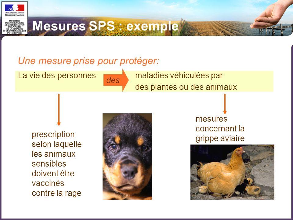 La vie des personnesmaladies véhiculées par des plantes ou des animaux des Une mesure prise pour protéger: prescription selon laquelle les animaux sen