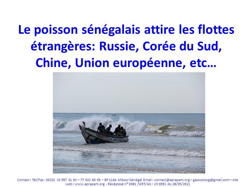 Russie Après le déclin de la flotte soviétique dans les années 90, la Russie reconstitue une flotte Uniquement des super chalutiers ciblant les petits pélagiques Accords de coopération avec +- tous les pays de la côte atlantique de lAfrique (recherche, surveillance, formation) + protocole pêche secret pour laccès des chalutiers Au Sénégal, les autorisations de pêche octroyées à lencontre de la loi ont été suspendues Problèmes: Pêche sans autorisation - cas de pêche INN (ex: Bateau Oleg Naydenov), Opacité sur le contenu de laccord, Impact de lexploitation des petits pélagiques dans la région sur la sécurité alimentaire Contact : Tél/Fax : 00221 33 957 31 93 – 77 632 66 65 – BP 1144 Mbour Sénégal Email : contact@aprapam.org – gaoussoug@gmail.com – site web : www.aprapam.org - Récépissé n° 0081 /GRT/AS – JO 6591 du 28/05/2011
