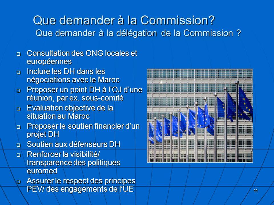 44 Que demander à la Commission? Que demander à la délégation de la Commission ? Consultation des ONG locales et européennes Consultation des ONG loca
