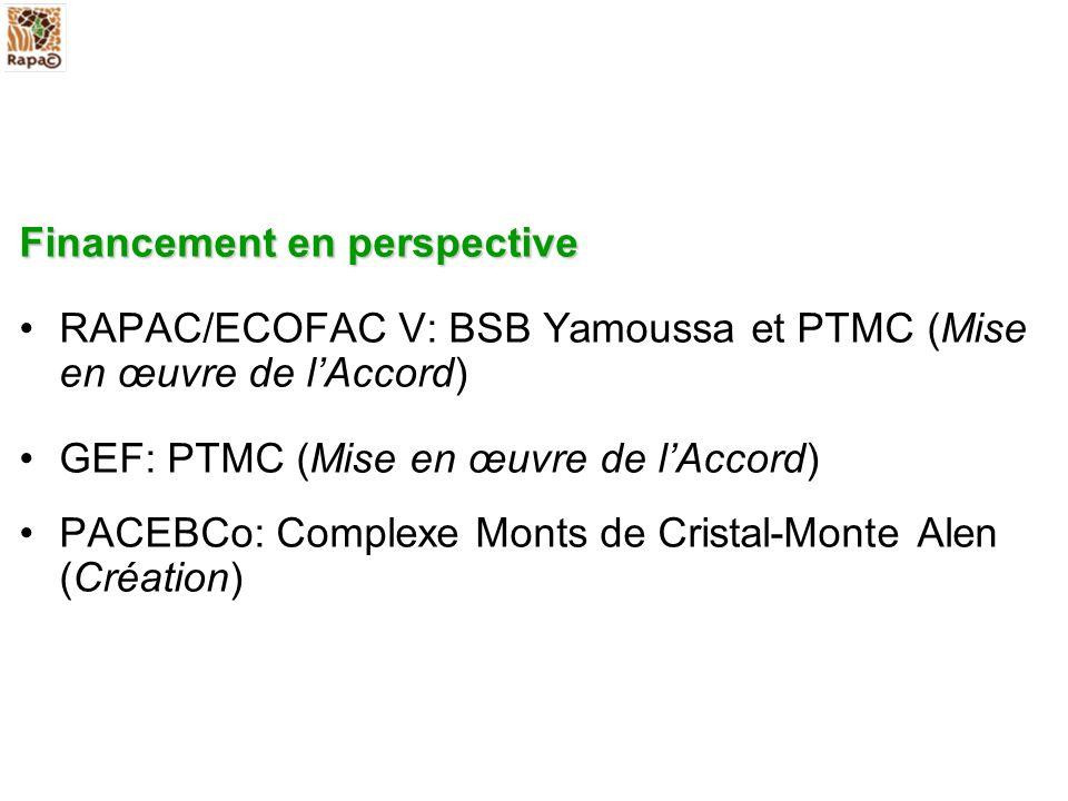 Financement en perspective RAPAC/ECOFAC V: BSB Yamoussa et PTMC (Mise en œuvre de lAccord) GEF: PTMC (Mise en œuvre de lAccord) PACEBCo: Complexe Mont