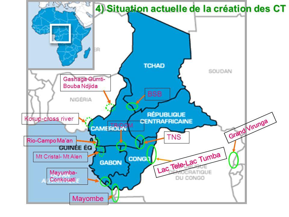 N° Nom du complexePays concernésSituation 1Trinational de la Sangha (TNS)Cameroun, Congo et RCAAccord 2000 2Trinational de Dja-Minkébé-Odzala (TRIDOM) Cameroun, Congo et GabonAccord 2005 3Parc transfrontalier Mayumba-Conkouati (PTMC)Congo et GabonAccord 2010 4Complexe transfrontalier de MayombeAngola, Congo et RDCAccord 5Complexe transfrontalier Lac Télé - Lac TumbaCongo et RDCAccord 2010 6 Binational Bouba Ndjidda-Séna Oura (BSB Yamoussa)Cameroun et TchadAccord 2011 7*Complexe transfrontalier du Grand VirungaOuganda, RDC et RwandaAccord 8Binational Rio-Campo-Ma an Cameroun et Guinée EquatorialeEn cours 9*2 complexes transfrontaliersCameroun et NigériaEn cours 10 Complexe transfrontalier de Monts de Cristal- Monte Alen Gabon et Guinée EquatorialeEn perspective