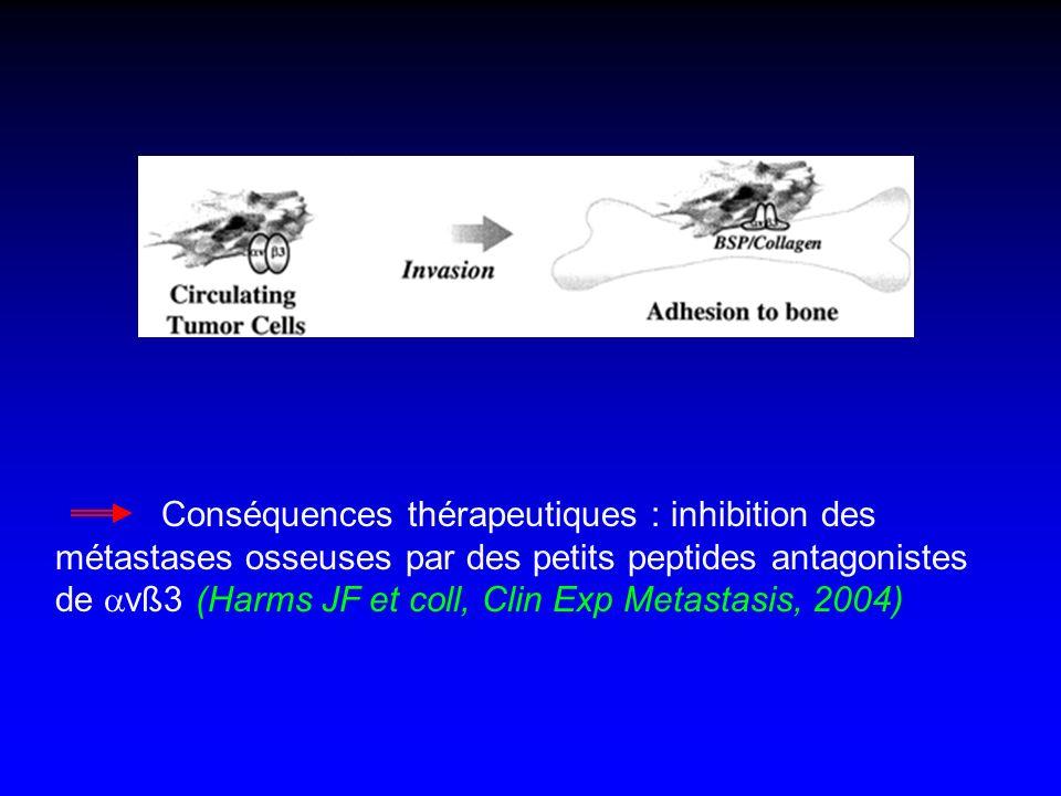 Conséquences thérapeutiques : inhibition des métastases osseuses par des petits peptides antagonistes de vß3 (Harms JF et coll, Clin Exp Metastasis, 2