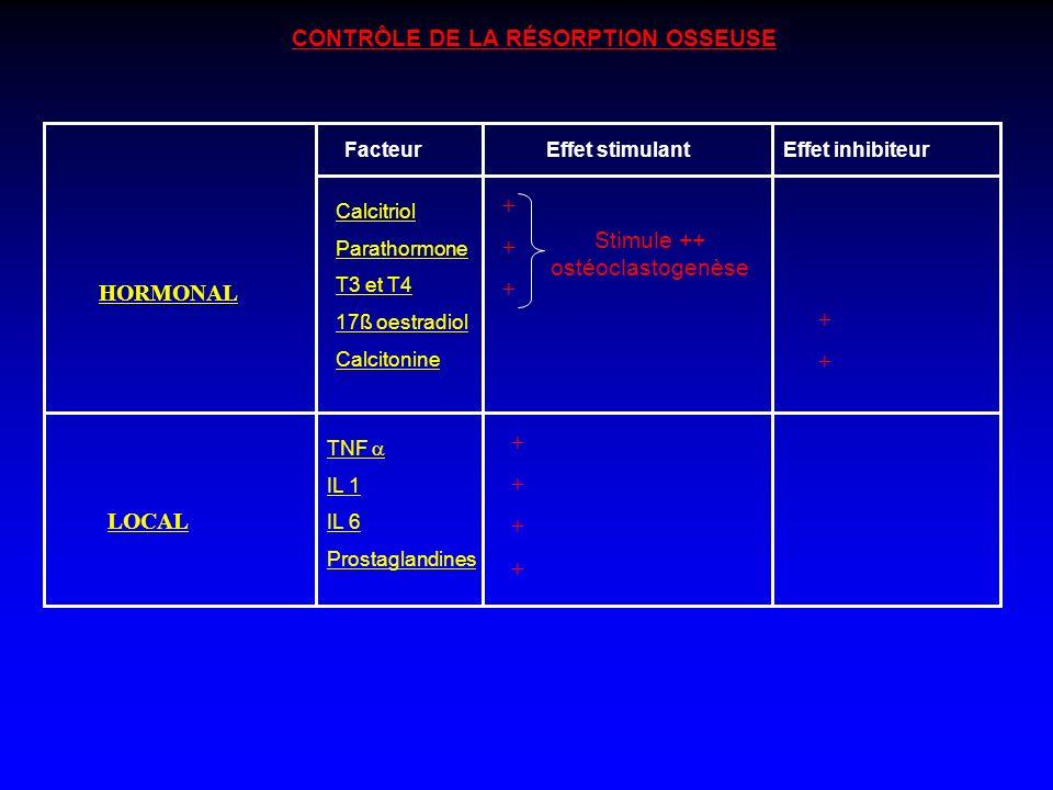 CONTRÔLE DE LA RÉSORPTION OSSEUSE HORMONAL LOCAL FacteurEffet stimulantEffet inhibiteur Calcitriol Parathormone T3 et T4 17ß oestradiol Calcitonine ++