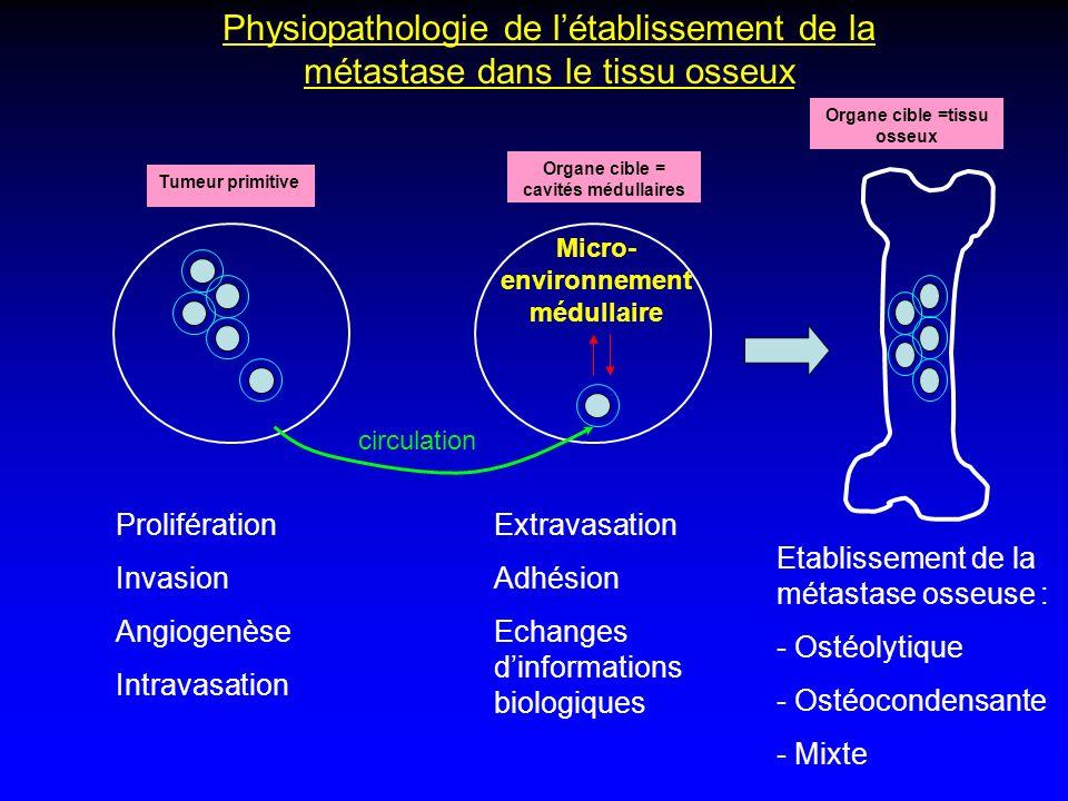 Physiopathologie de létablissement de la métastase dans le tissu osseux Tumeur primitive Organe cible = cavités médullaires Prolifération Invasion Ang