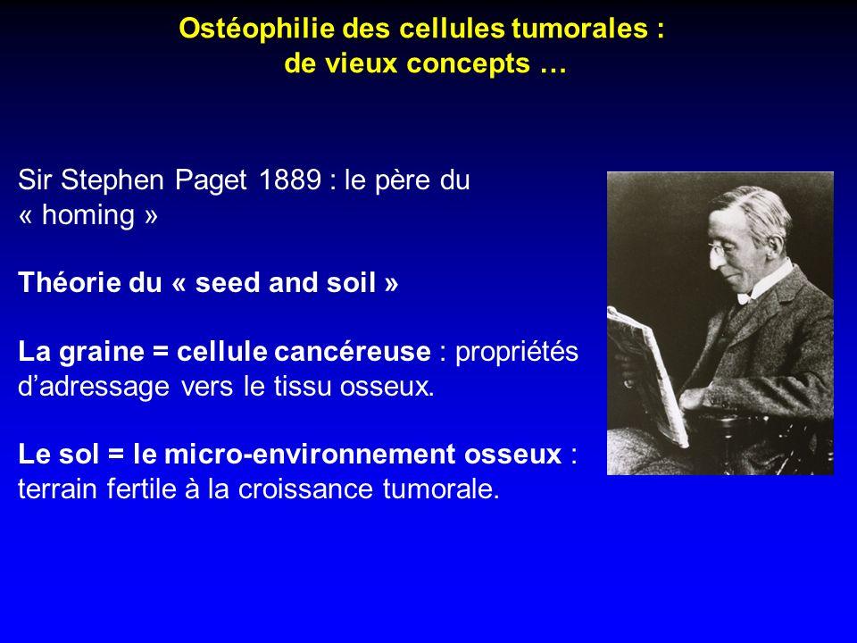 Ostéophilie des cellules tumorales : de vieux concepts … Sir Stephen Paget 1889 : le père du « homing » Théorie du « seed and soil » La graine = cellu