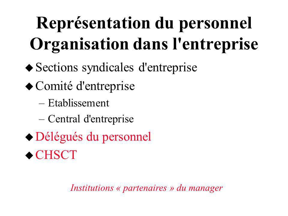 Représentation du personnel Organisation dans l'entreprise Sections syndicales d'entreprise Comité d'entreprise –Etablissement –Central d'entreprise D