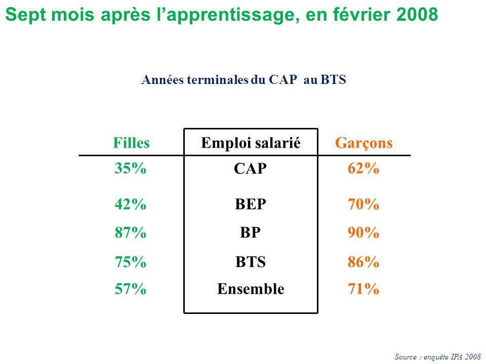 FillesEmploi salariéGarçons 35% CAP 62% 42%BEP70% 87%BP90% 75%BTS86% 57%Ensemble71% Années terminales du CAP au BTS Sept mois après lapprentissage, en