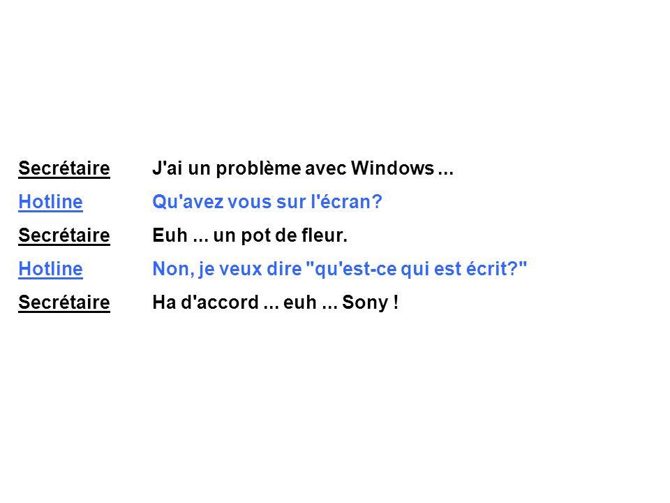 Secrétaire J ai un problème avec Windows...Hotline Qu avez vous sur l écran.