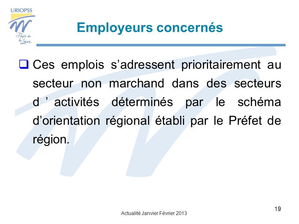 Actualité Janvier Février 2013 19 Ces emplois sadressent prioritairement au secteur non marchand dans des secteurs dactivités déterminés par le schéma dorientation régional établi par le Préfet de région.