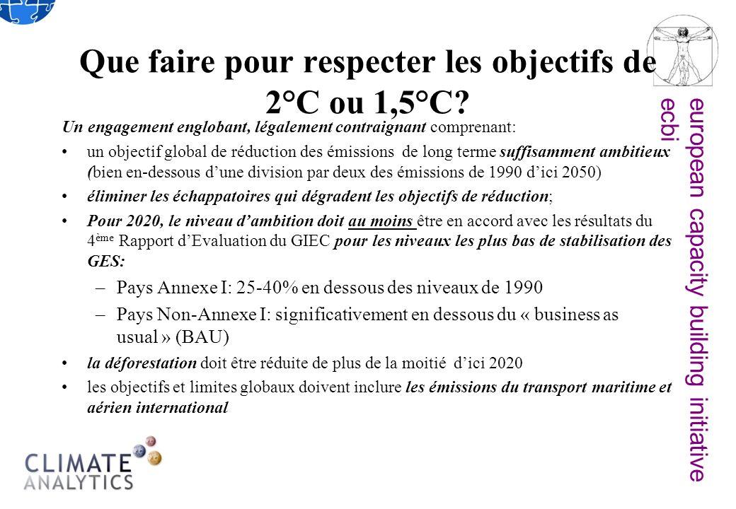 european capacity building initiativeecbi Que faire pour respecter les objectifs de 2°C ou 1,5°C.
