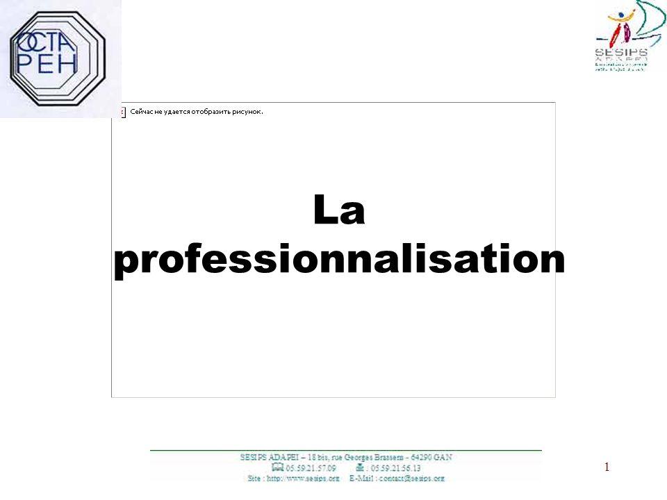 1 1 La professionnalisation