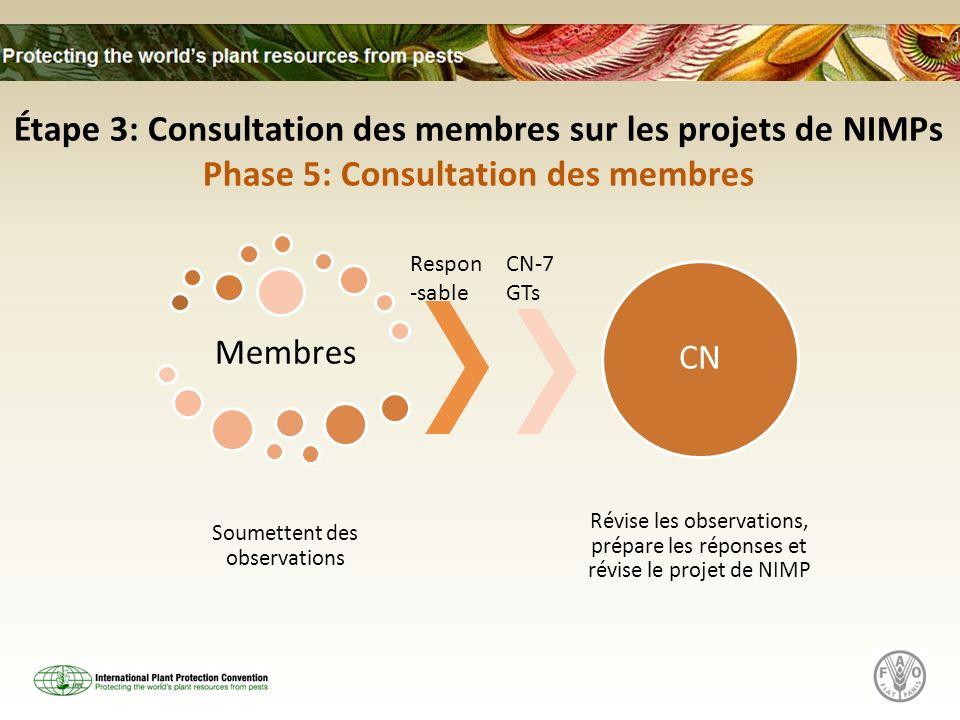 Membres Soumettent des observations CN Révise les observations, prépare les réponses et révise le projet de NIMP Étape 3: Consultation des membres sur