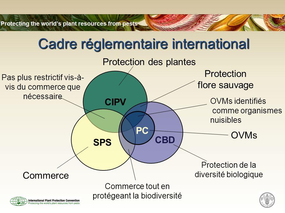 CIPV CBD SPS Cadre réglementaire international PC Protection flore sauvage Commerce tout en protégeant la biodiversité Commerce OVMs Pas plus restrict