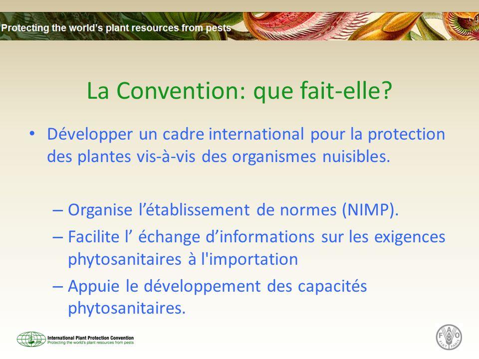 La Convention: que fait-elle? Développer un cadre international pour la protection des plantes vis-à-vis des organismes nuisibles. – Organise létablis