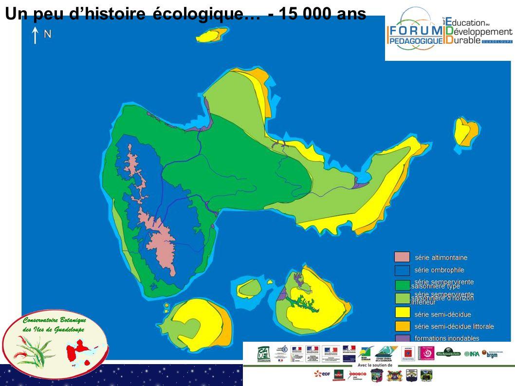 Un peu dhistoire écologique… - 15 000 ans
