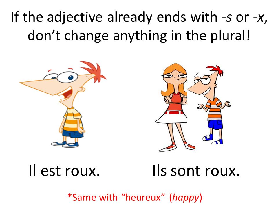 If the adjective already ends with -s or -x, dont change anything in the plural.
