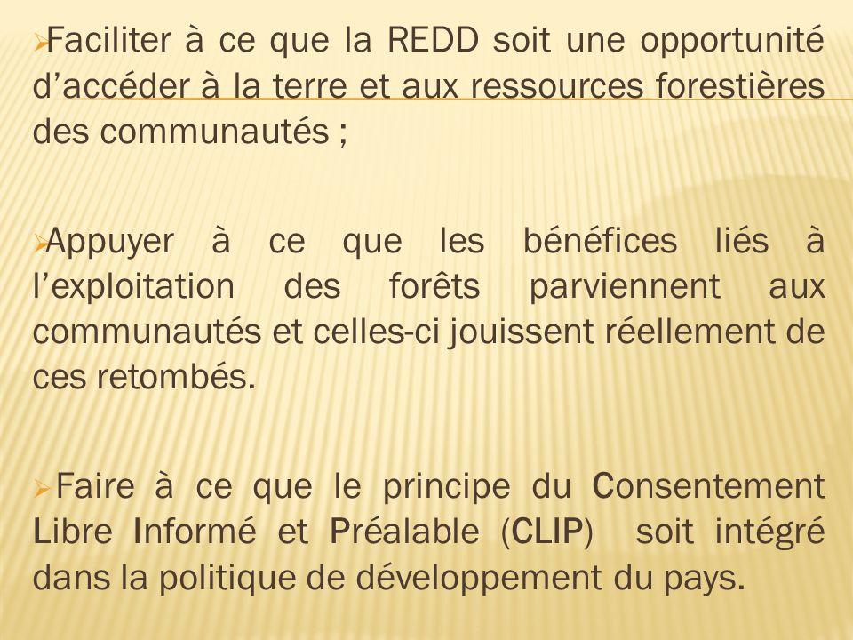 Faciliter à ce que la REDD soit une opportunité daccéder à la terre et aux ressources forestières des communautés ; Appuyer à ce que les bénéfices liés à lexploitation des forêts parviennent aux communautés et celles-ci jouissent réellement de ces retombés.