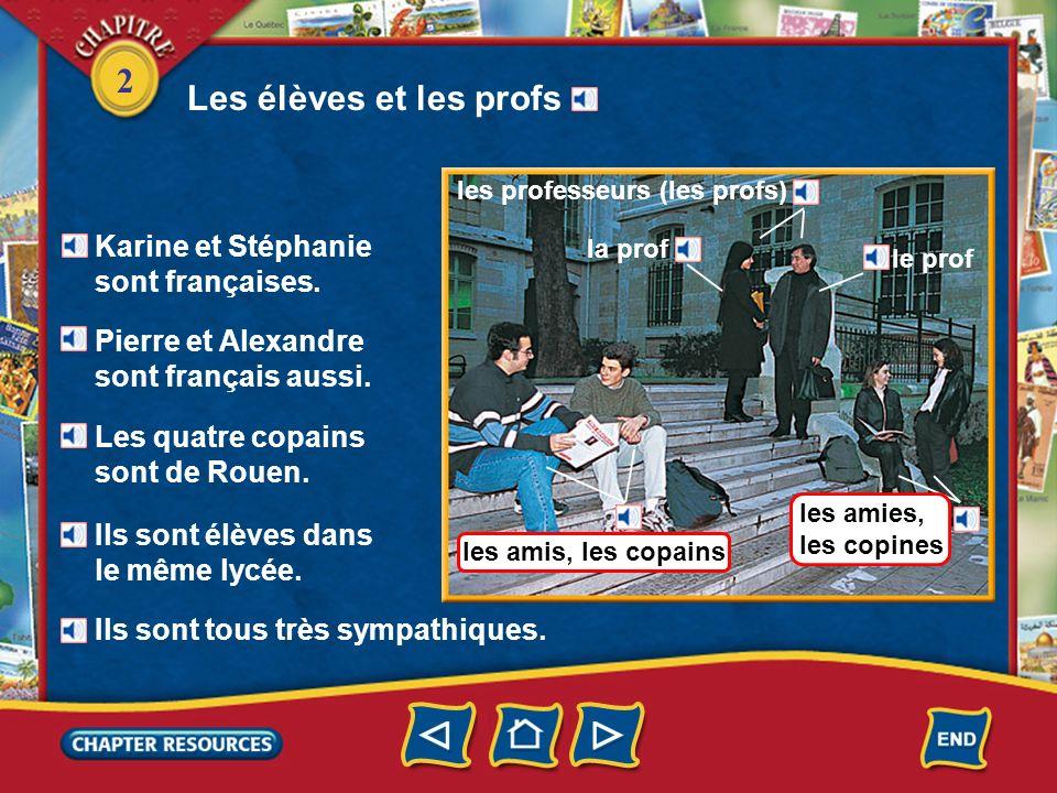 2 Identifying school subjects le français lespagnol (m.) litalien (m.) lallemand (m.) French Spanish Italian les langues (f.