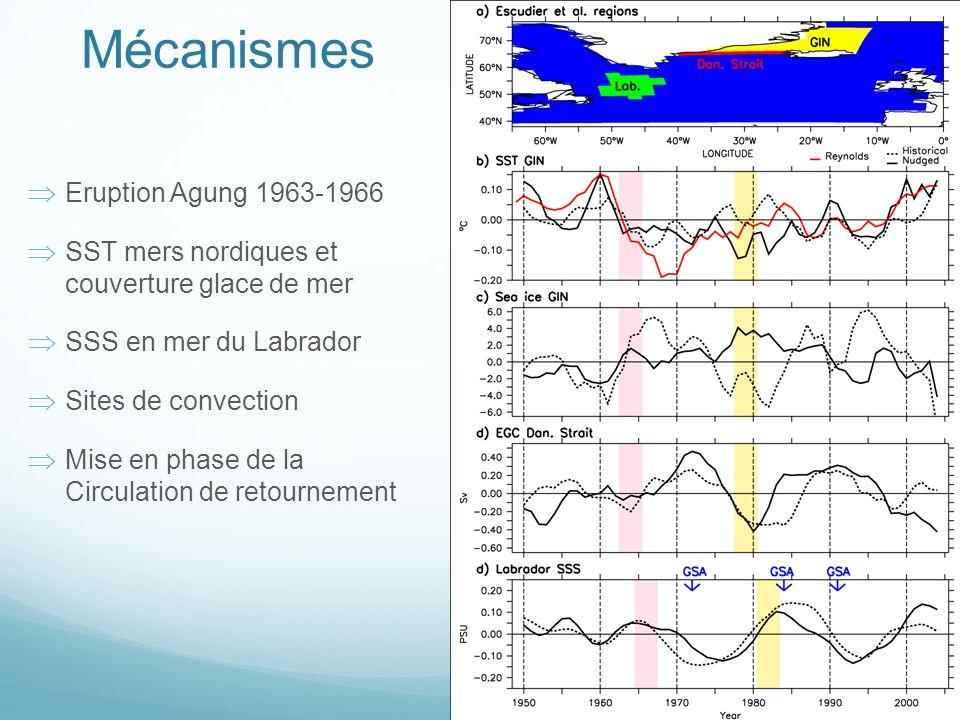 Mécanismes Eruption Agung 1963-1966 SST mers nordiques et couverture glace de mer SSS en mer du Labrador Sites de convection Mise en phase de la Circulation de retournement