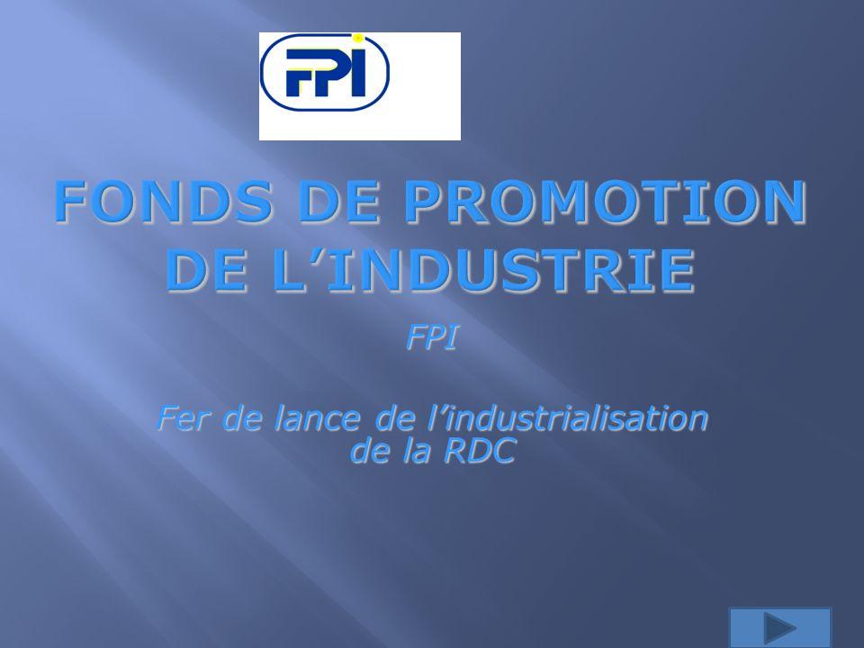 FPI Fer de lance de lindustrialisation de la RDC