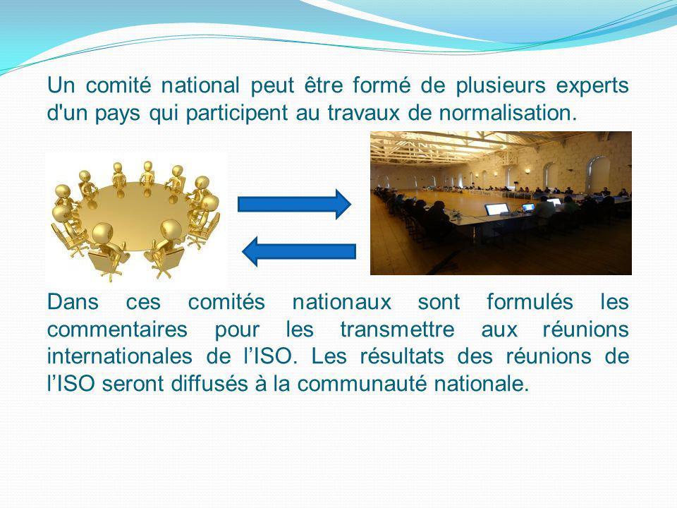 Un comité national peut être formé de plusieurs experts d'un pays qui participent au travaux de normalisation. Dans ces comités nationaux sont formulé