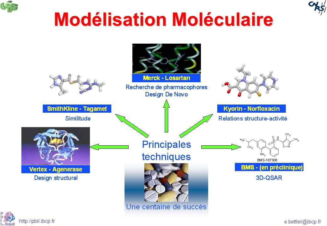 e.bettler@ibcp.fr http://pbil.ibcp.fr Modélisation Moléculaire