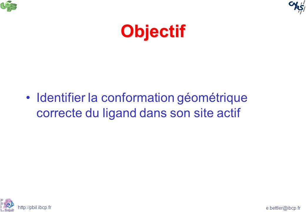 e.bettler@ibcp.fr http://pbil.ibcp.fr Objectif Identifier la conformation géométrique correcte du ligand dans son site actif